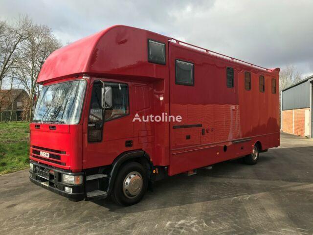 IVECO Pferdetransporter transportador de caballos